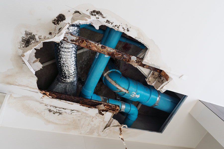 Leaking Pipes in Your Parkville, MD Home Should Be Dealt with Immediately