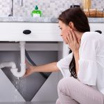 Some Facts About Plumbing Leaks That Might Surprise You in Baltimore, MD